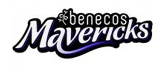 benecosMavericks Coaching Twilight workshop